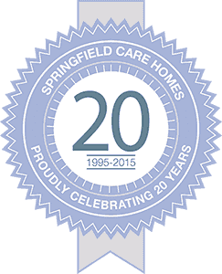 20th Anniversary Badge